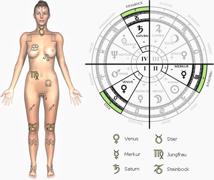 Der Kosmische Mensch Element Erde